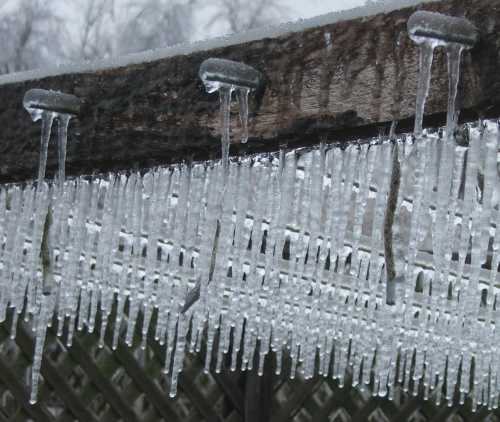 ice-storm-clothesline-2.jpg