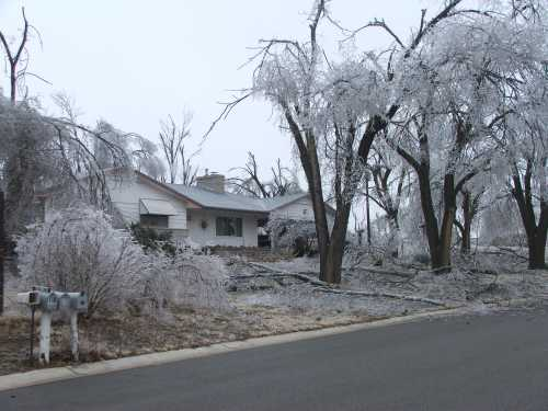 ice-storm-front-yard.jpg