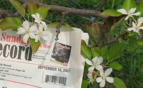 apple-blossom-time.jpg