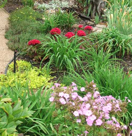 sept-gbbd-front-garden.jpg