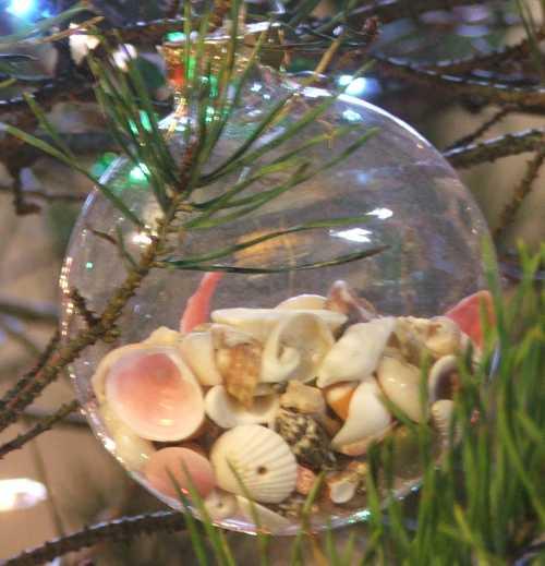 ornaments-shells.jpg