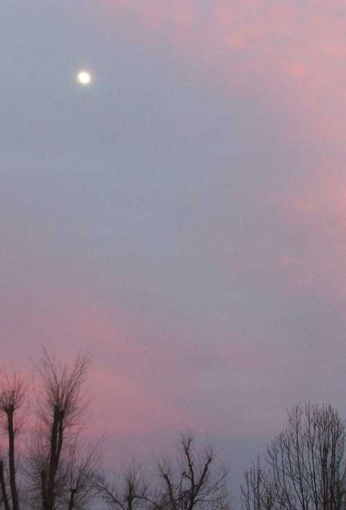 solstice-moon-in-east.jpg