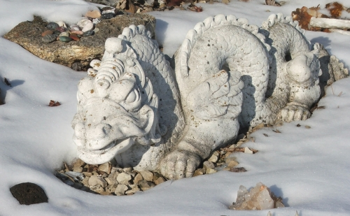 01february2008-white-dragon.jpg