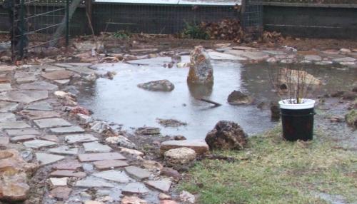 05february2008-rain-garden.jpg