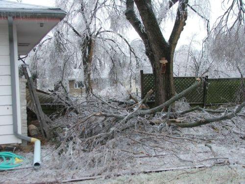 Jan 14, 2007 Ice storm 001