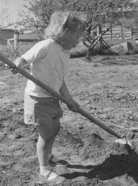 gardener Ellie
